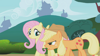 """Applejack """"why are we doing this?"""" S1E04"""
