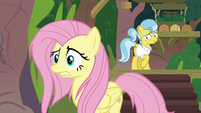 Fluttershy getting even more stressed out S9E18