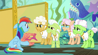 Rainbow Dash confessing to the grannies S8E5