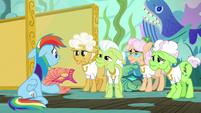 Rainbow Dash confessing to the grannies S8E5