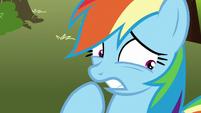 Rainbow Dash struggles with the decision S8E5
