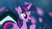 Twilight -as long as you get permission- S9E3
