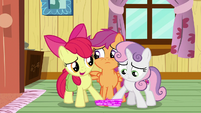 "Apple Bloom ""don't give up, Scootaloo"" S9E12"