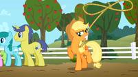 Applejack lasso S02E15