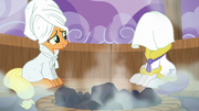 Applejack sits on the bench S6E10.png