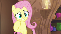 Fluttershy very worried about Zecora S7E20