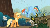 S02E01 Applejack i czekoladowy deszcz