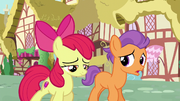 Tender Taps talks with Apple Bloom S6E4.png
