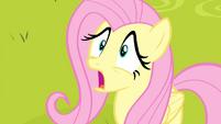 Fluttershy in shock S4E14