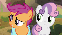 Scoot and Sweetie listen to Apple Bloom's plan S9E12