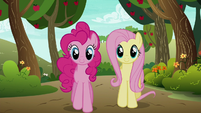 Pinkie Pie and Fluttershy walking confidently S6E18