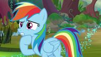 Rainbow thinks of ideas to cross the swamp S8E17