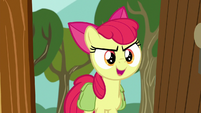 "Apple Bloom ""take things up a notch"" S9E12"