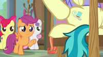 Close-up on Auntie Lofty's cutie mark S9E12