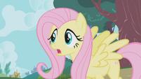 Fluttershy -Applejack, Winona, stop!- S1E04