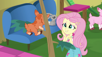 Fluttershy meets a goat on a boat EGSB