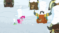 Pinkie, Rutherford, and yaks covered in snow S7E11