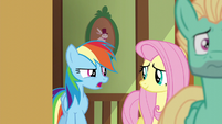 """Rainbow Dash """"you think he can do it?"""" S6E11"""