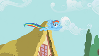 Rainbow Dash freak accidents S2E8