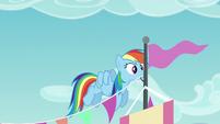 Rainbow Dash putting up decorations S5E24