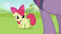 """Apple Bloom """"Hi Twilight"""" S2E03"""