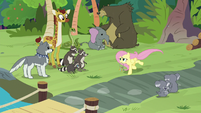 Pegasus Angel galloping past the animals S9E18