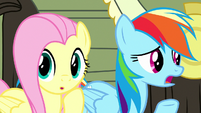 Rainbow Dash -we've tried everything!- S8E18