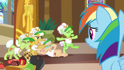 Rainbow Dash watches the grannies stretch S8E5.png
