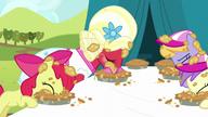 S05E17 Jedzenie ciast