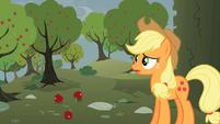 Applejack 'Where am I' S2E01