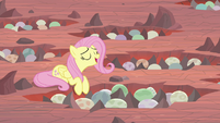 Fluttershy about to start singing S9E9