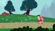 Pinkiepied