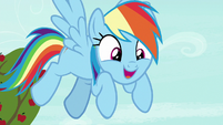 "Rainbow Dash ""the coolest ride ever to exist"" S8E5"
