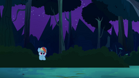 Rainbow watches from the bushes S4E04