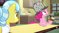 Pinkie Pie asking Dr. Fauna about Tank S7E23