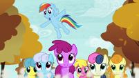 Rainbow Dash -Keep it up- S05E05