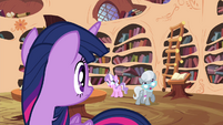 Twilight looking at Diamond Tiara and Silver Spoon S4E15