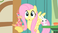 Fluttershy with Philomena in the hoof S1E22