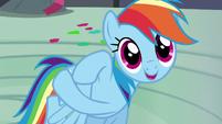 "Rainbow Dash ""hello, Captain Awesome!"" S6E7"