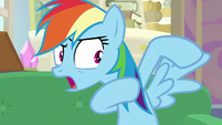 """Rainbow Dash """"we need to be able to fly!"""" S8E17"""