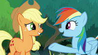 """Rainbow Dash """"you saved us from"""" S8E9"""