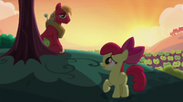 Apple Bloom looks back at Big Mac S5E17