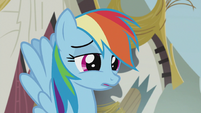 "Rainbow ""that was... really sappy"" S5E8"