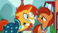 "Sunburst ""it needs to be a real friendship problem!"" S8E8"