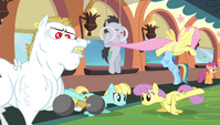 Ponyville teams training S4E24