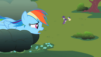 Rainbow Dash staring down at the foals S2E08