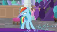 Rainbow Dash yelling over at Rarity S8E17