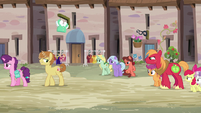Sugar Belle and Feather walk away from Big Mac and CMCs S7E8
