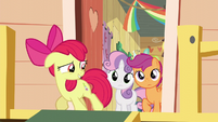 Apple Bloom banished from the clubhouse S5E4