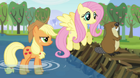 Applejack, Fluttershy, and one angry beaver S03E10